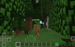 Скин дерева для майнкрафт
