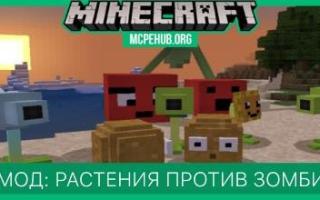 Minecraft vs plants vs zombies